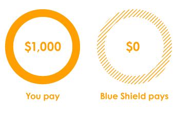 Blue Shield Of California California Health Insurance